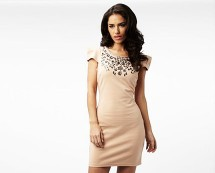 Beaded Neckline Dress